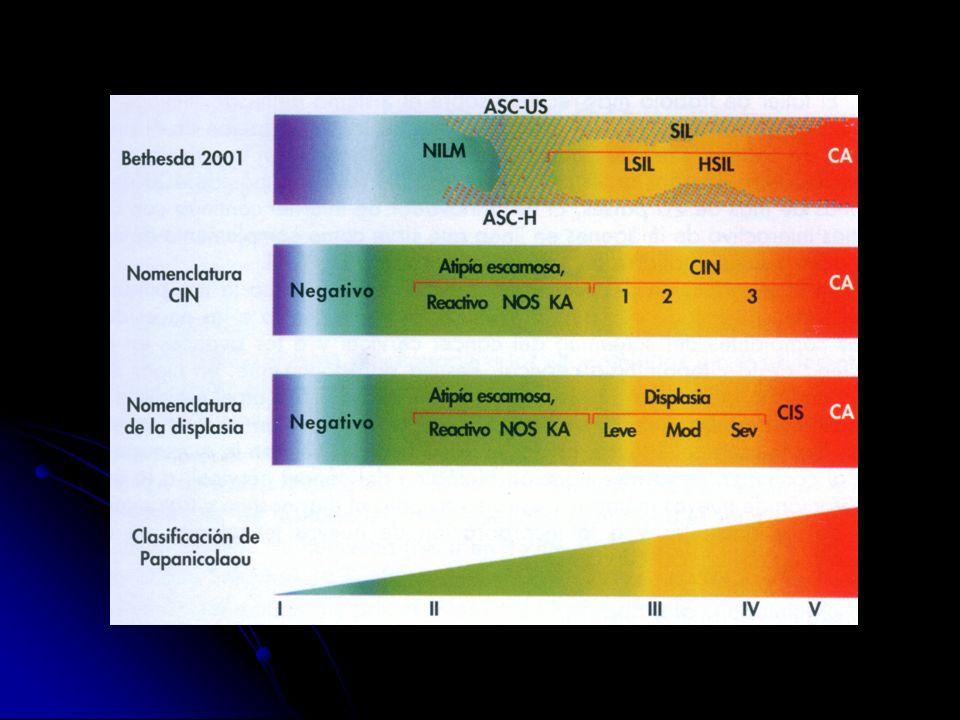 I: nuloII: Atipias. III: Displasias. IV: In situ. V: CA. Displasia Leve: 1/3 inferior, Moderada: 2/3, In situ: todo el grosor.