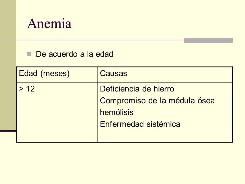 Anemia Anemia De acuerdo a la edad Edad (meses) Causas > 12