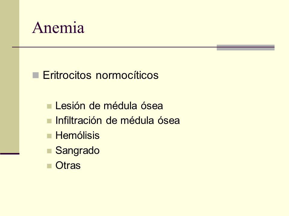 Anemia Eritrocitos normocíticos Lesión de médula ósea