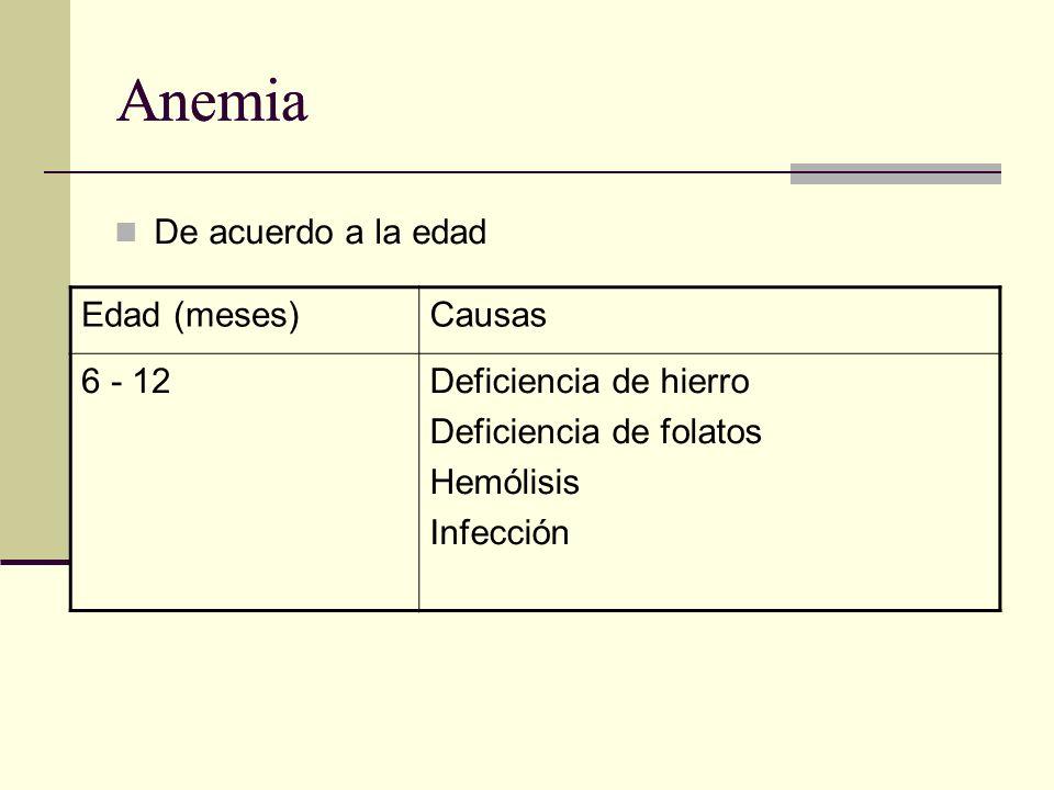 Anemia Anemia De acuerdo a la edad Edad (meses) Causas 6 - 12