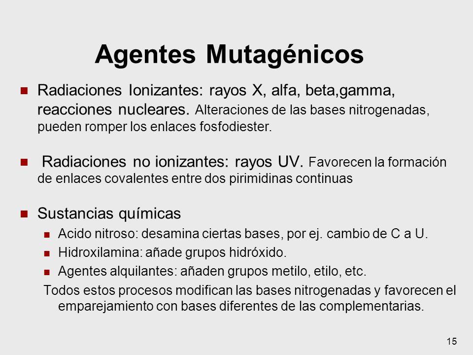 Agentes Mutagénicos