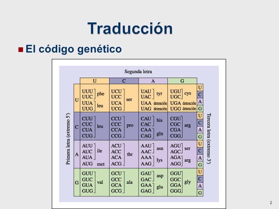 Traducción El código genético 2