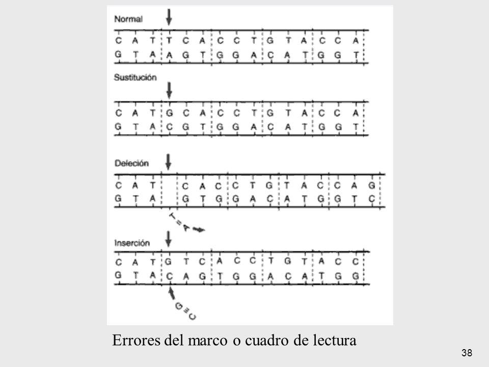 Errores del marco o cuadro de lectura