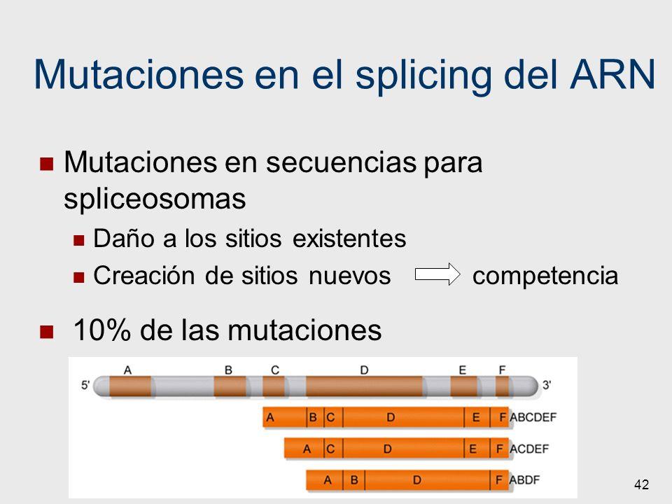 Mutaciones en el splicing del ARN