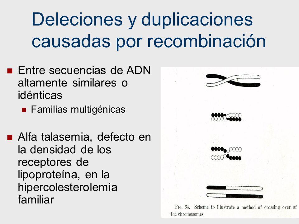 Deleciones y duplicaciones causadas por recombinación