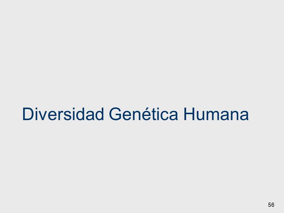 Diversidad Genética Humana