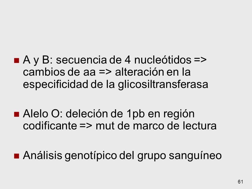 A y B: secuencia de 4 nucleótidos => cambios de aa => alteración en la especificidad de la glicosiltransferasa
