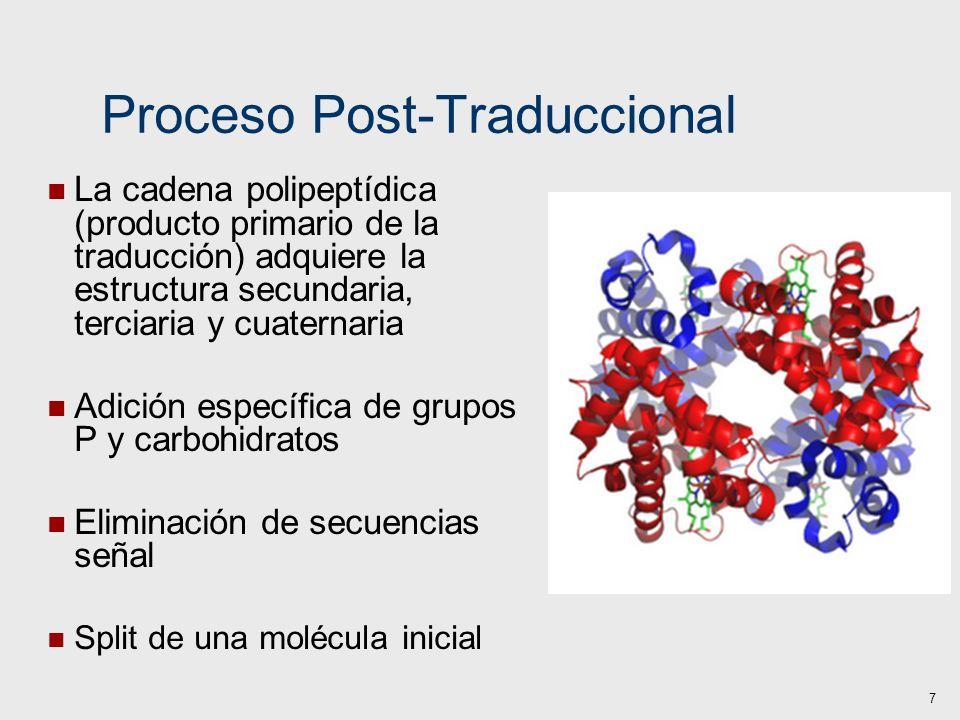 Proceso Post-Traduccional