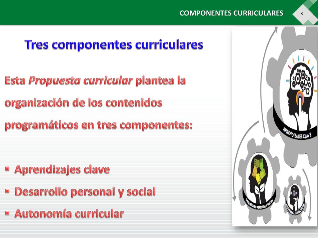 Tres componentes curriculares