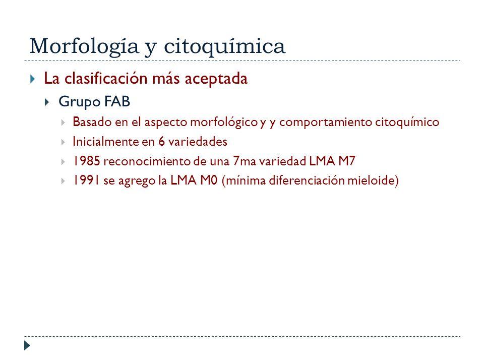 Morfología y citoquímica
