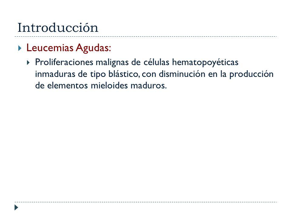 Introducción Leucemias Agudas: