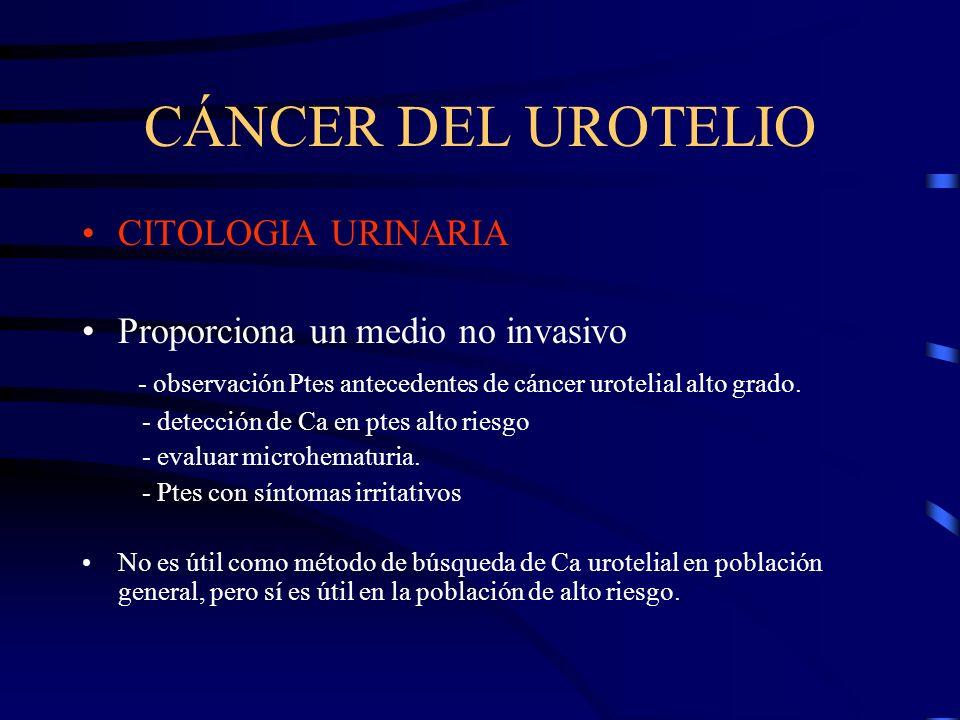 CÁNCER DEL UROTELIO CITOLOGIA URINARIA