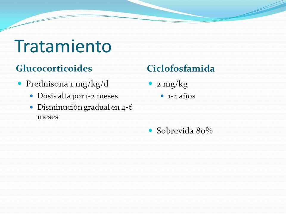 Tratamiento Glucocorticoides Ciclofosfamida Prednisona 1 mg/kg/d