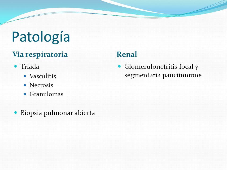 Patología Vía respiratoria Renal Tríada Biopsia pulmonar abierta
