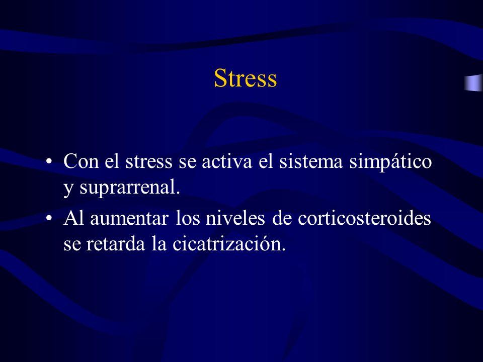 Stress Con el stress se activa el sistema simpático y suprarrenal.