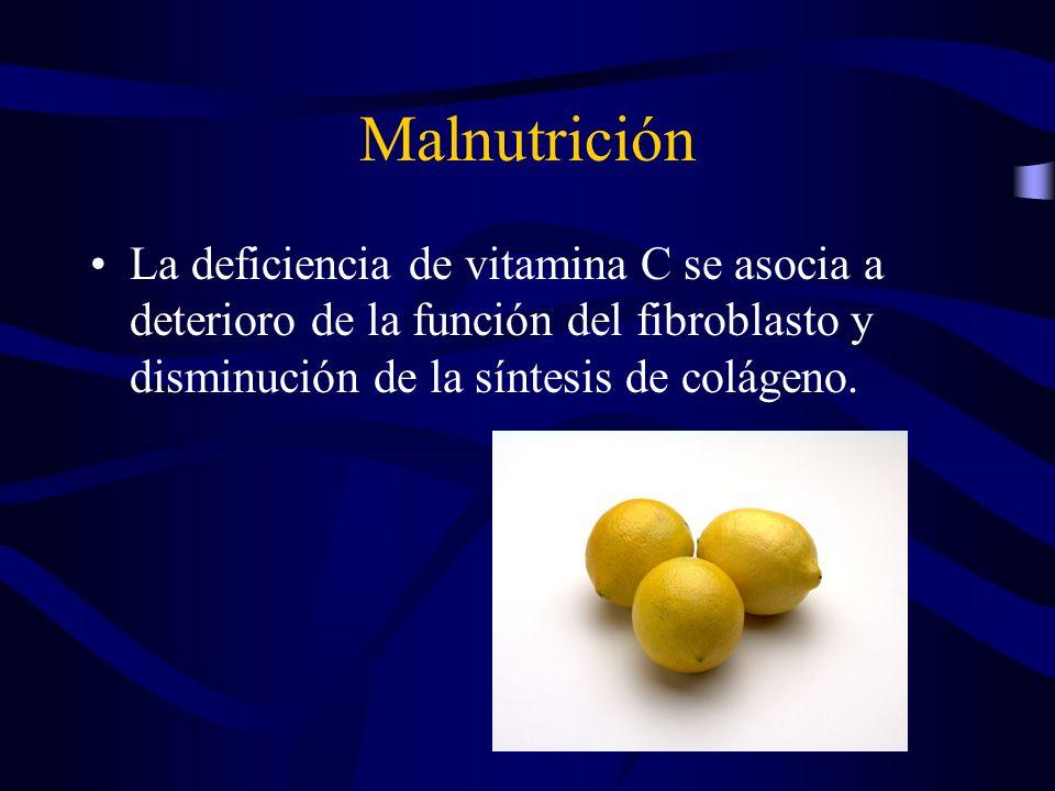 Malnutrición La deficiencia de vitamina C se asocia a deterioro de la función del fibroblasto y disminución de la síntesis de colágeno.