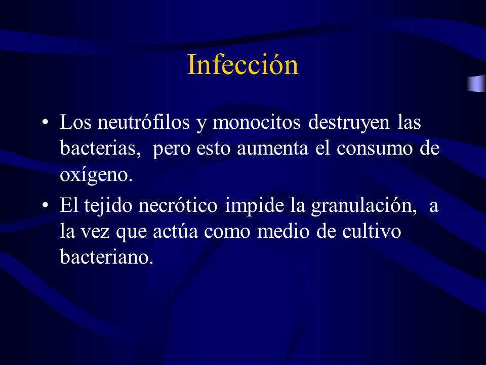 Infección Los neutrófilos y monocitos destruyen las bacterias, pero esto aumenta el consumo de oxígeno.