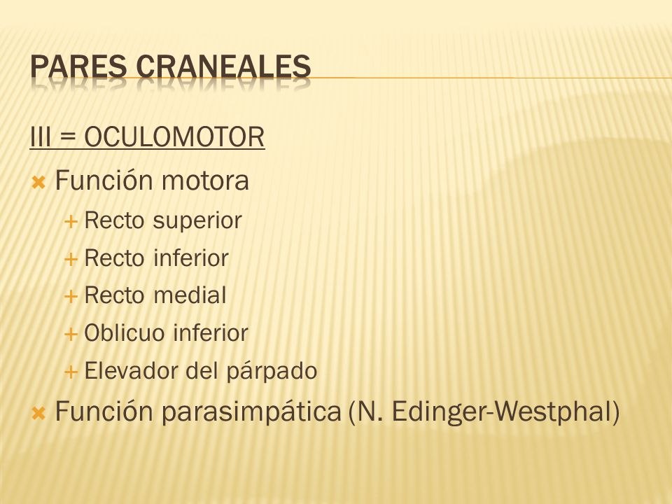PARES CRANEALES III = OCULOMOTOR Función motora