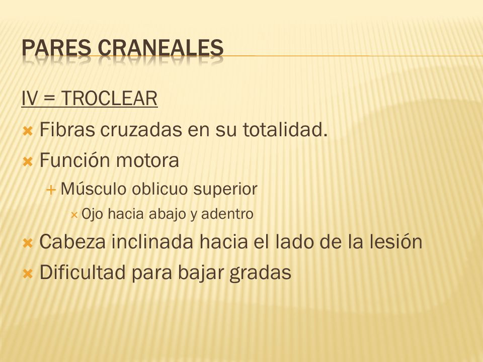 PARES CRANEALES IV = TROCLEAR Fibras cruzadas en su totalidad.