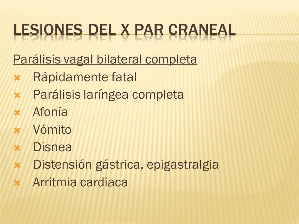 LESIONES DEL X PAR CRANEAL