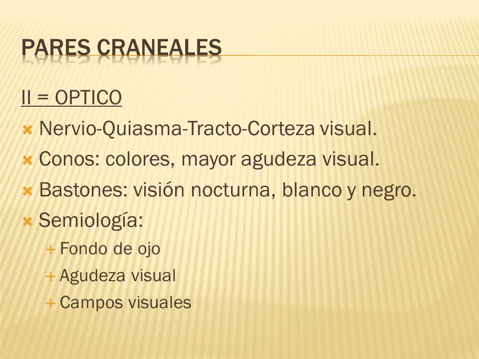 PARES CRANEALES II = OPTICO Nervio-Quiasma-Tracto-Corteza visual.