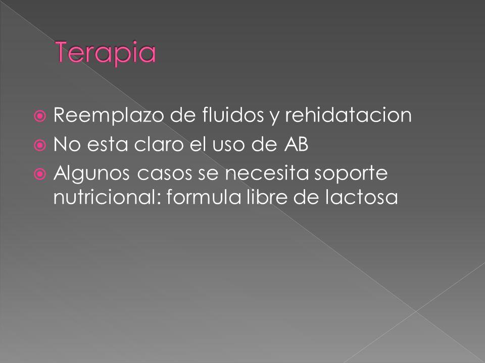 Terapia Reemplazo de fluidos y rehidatacion No esta claro el uso de AB