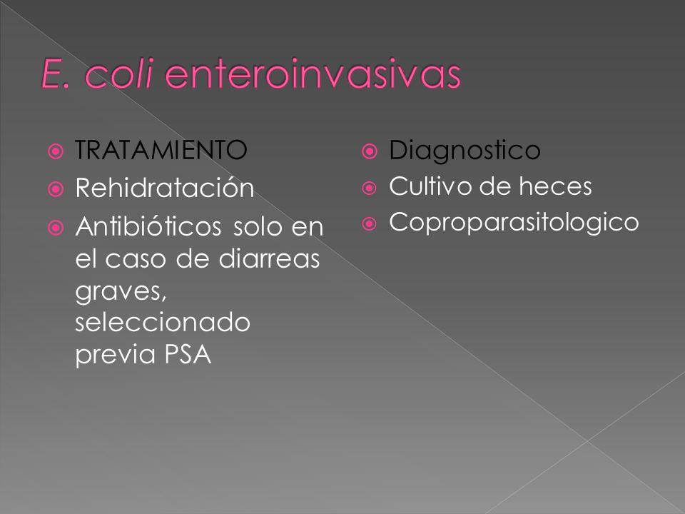 E. coli enteroinvasivas