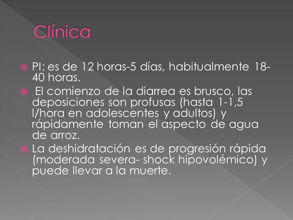 Clínica PI: es de 12 horas-5 días, habitualmente 18-40 horas.