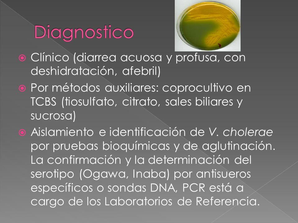 Diagnostico Clínico (diarrea acuosa y profusa, con deshidratación, afebril)