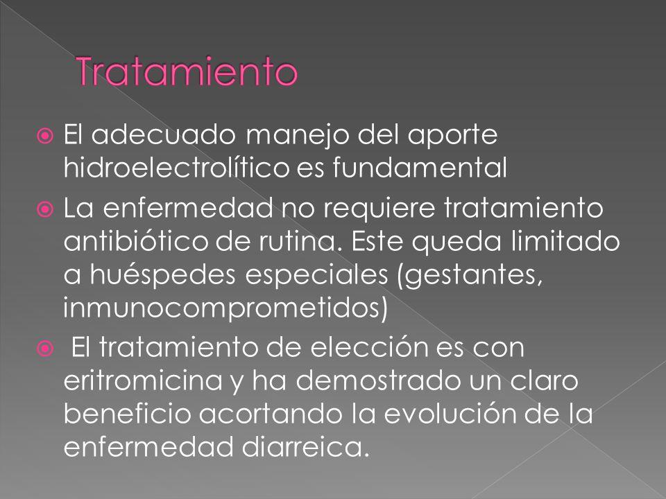 Tratamiento El adecuado manejo del aporte hidroelectrolítico es fundamental.