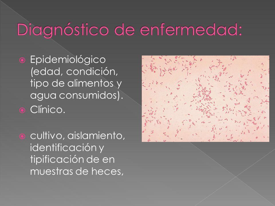 Diagnóstico de enfermedad: