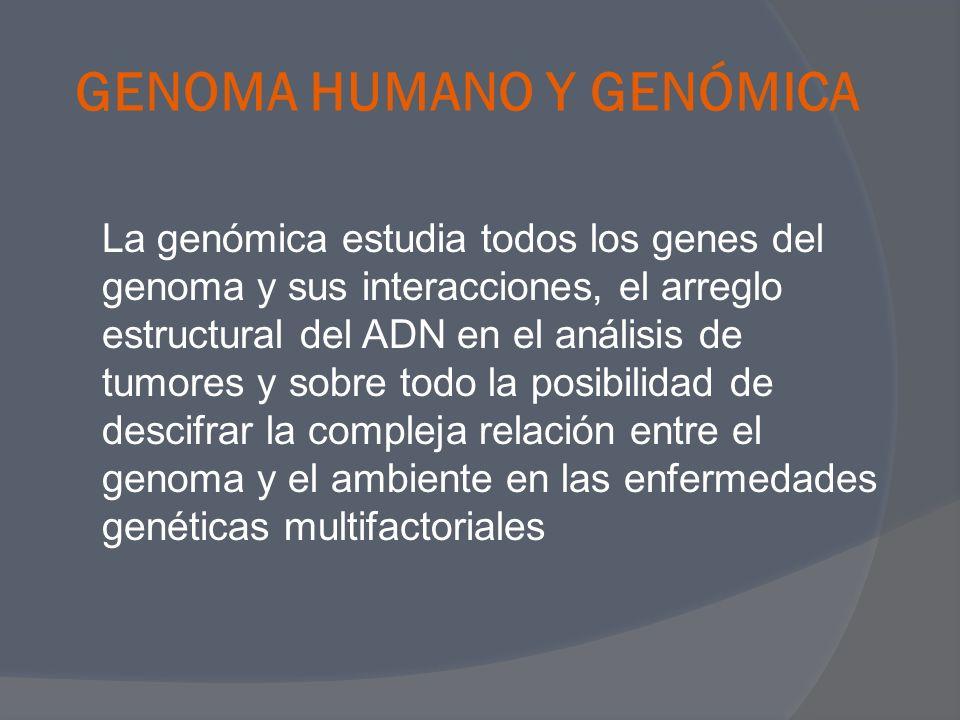 GENOMA HUMANO Y GENÓMICA
