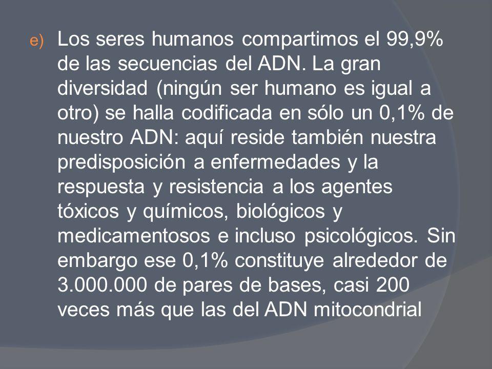 Los seres humanos compartimos el 99,9% de las secuencias del ADN