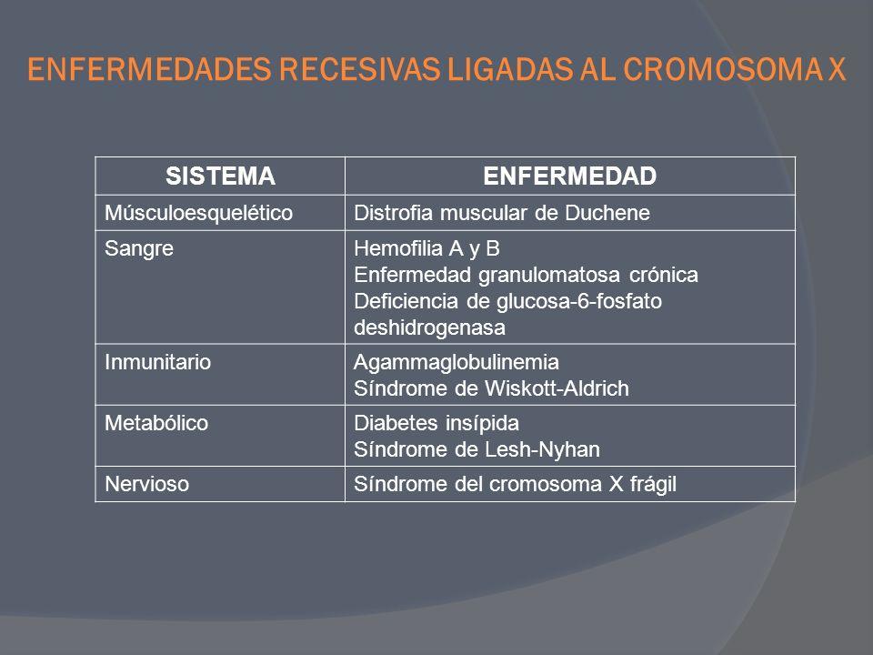ENFERMEDADES RECESIVAS LIGADAS AL CROMOSOMA X