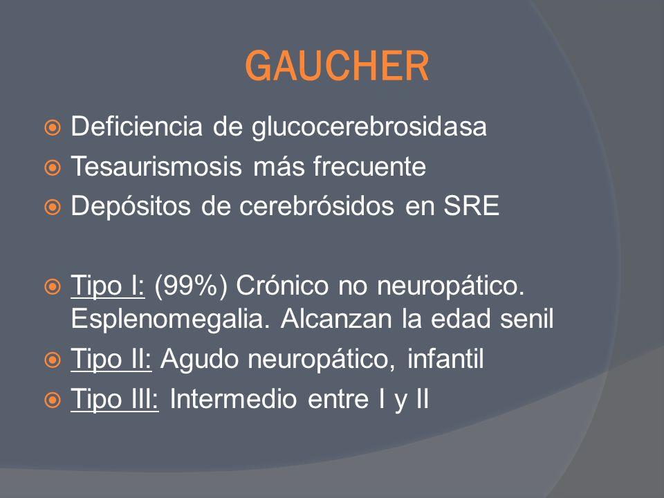 GAUCHER Deficiencia de glucocerebrosidasa Tesaurismosis más frecuente