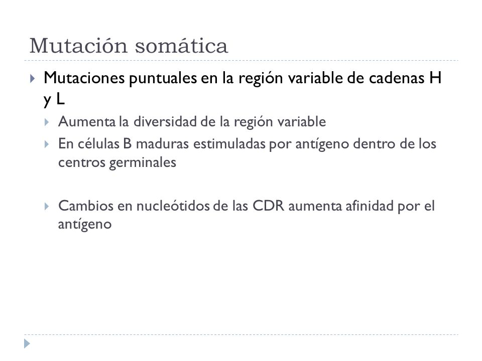 Mutación somática Mutaciones puntuales en la región variable de cadenas H y L. Aumenta la diversidad de la región variable.