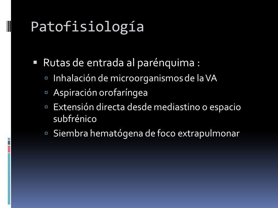 Patofisiología Rutas de entrada al parénquima :