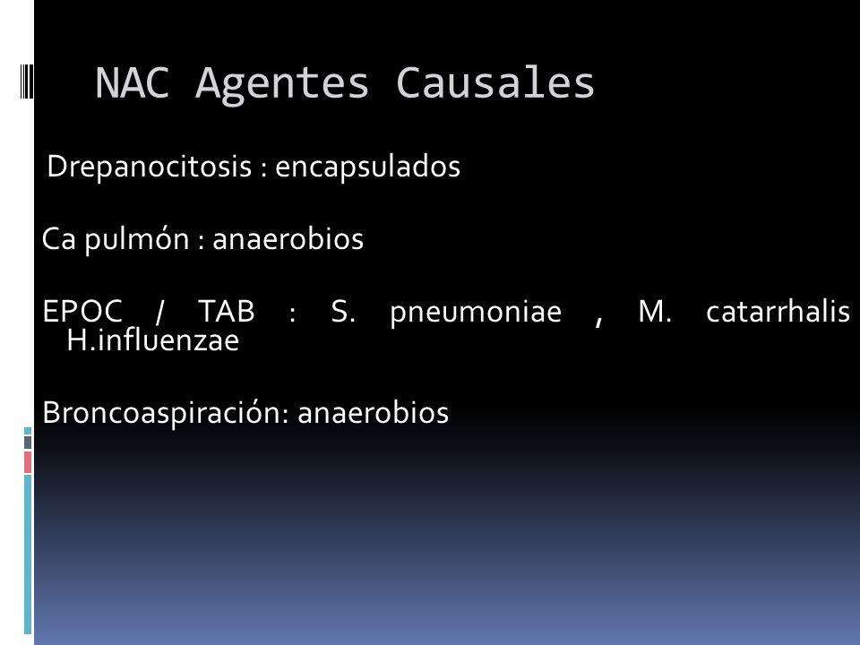 NAC Agentes Causales Ca pulmón : anaerobios