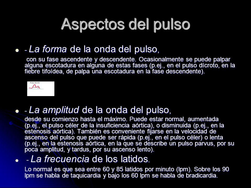 Aspectos del pulso - La forma de la onda del pulso,