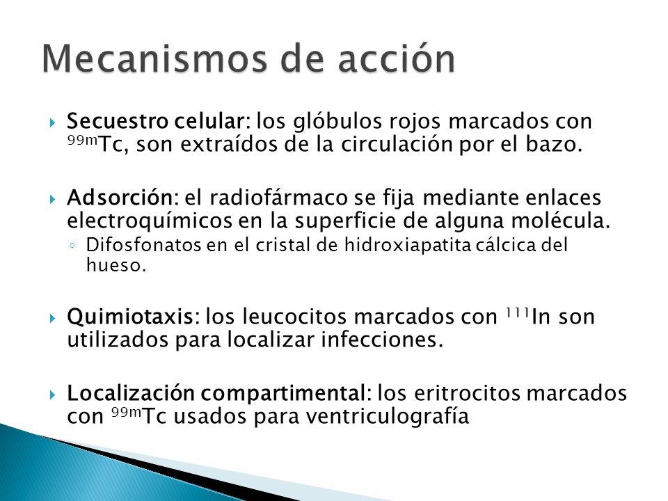 Mecanismos de acción Secuestro celular: los glóbulos rojos marcados con 99mTc, son extraídos de la circulación por el bazo.