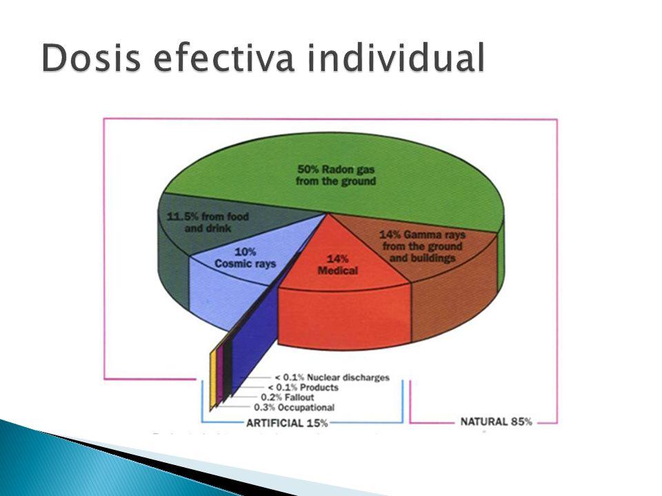 Dosis efectiva individual