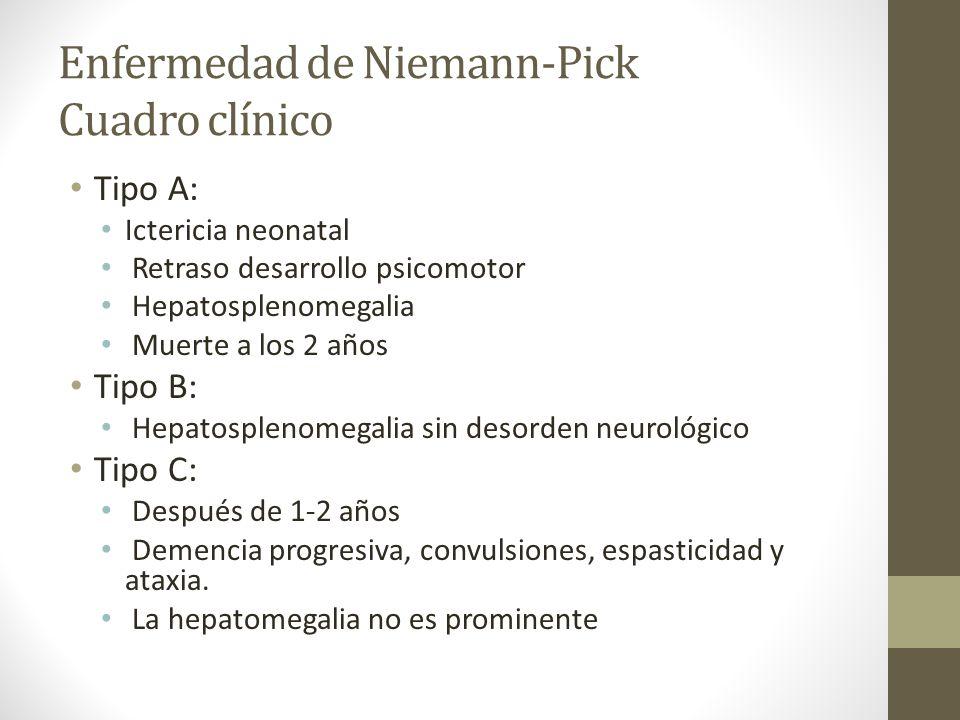 Enfermedad de Niemann-Pick Cuadro clínico