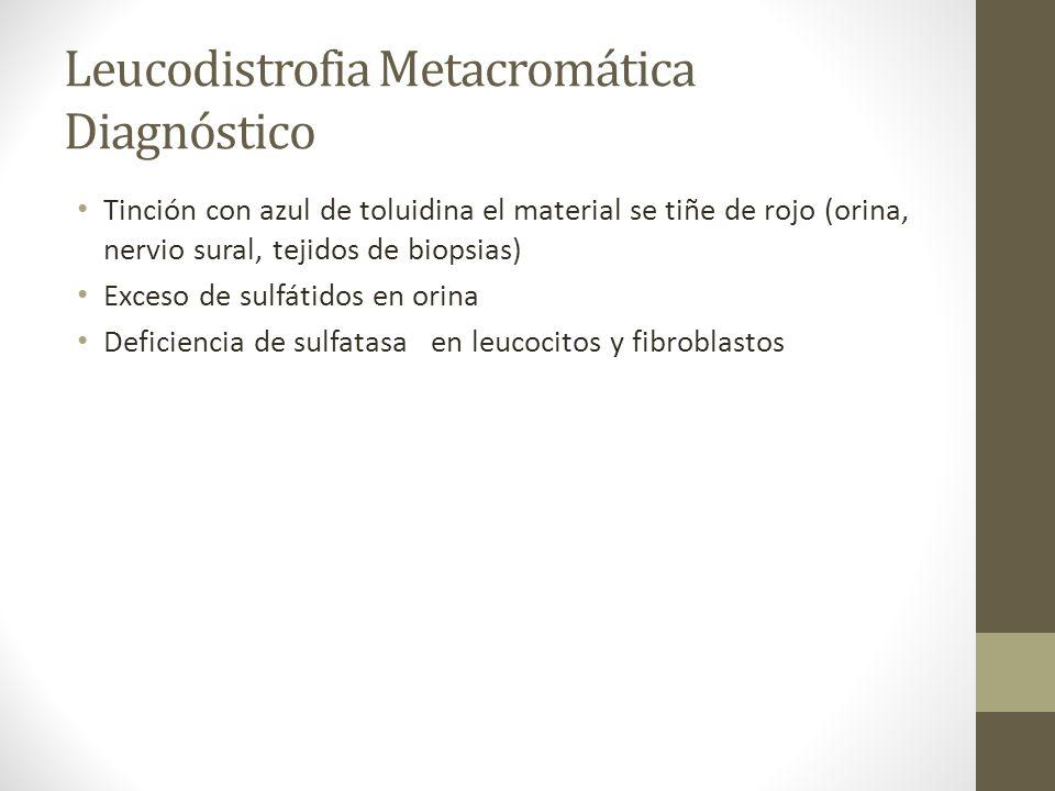 Leucodistrofia Metacromática Diagnóstico