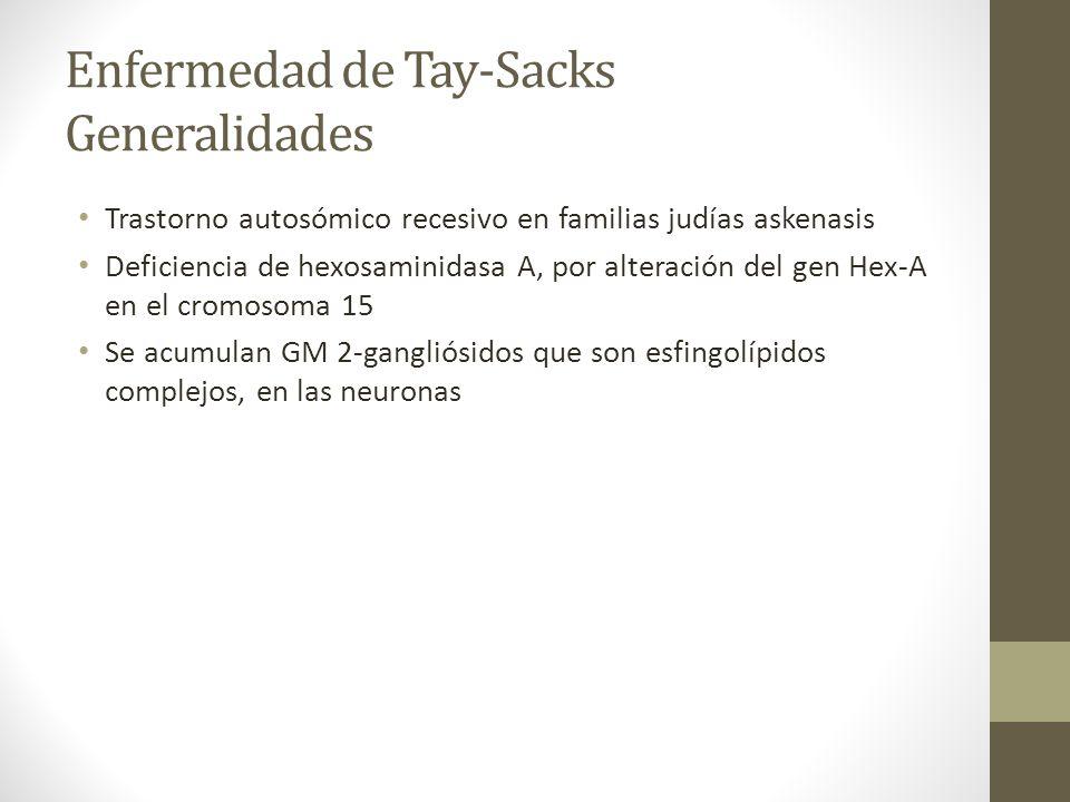Enfermedad de Tay-Sacks Generalidades