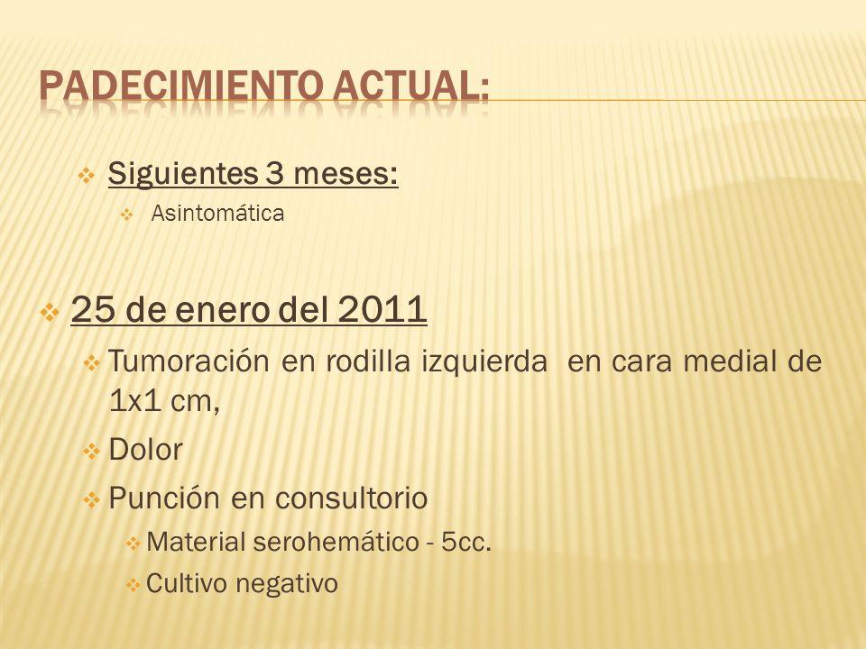 Padecimiento actual: 25 de enero del 2011 Siguientes 3 meses: