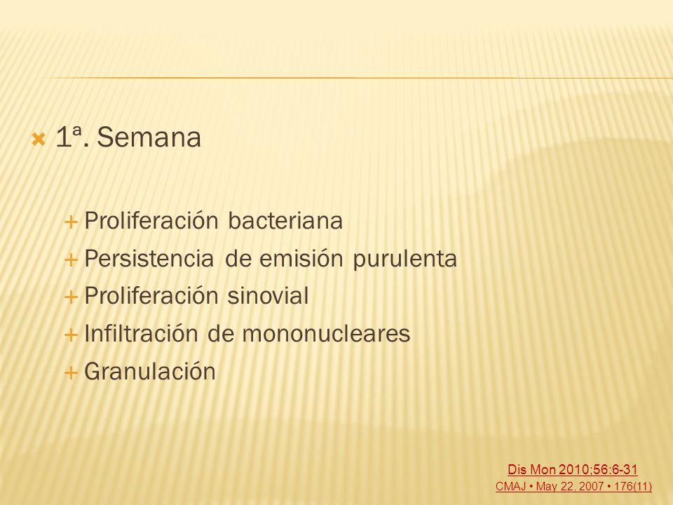 1ª. Semana Proliferación bacteriana Persistencia de emisión purulenta