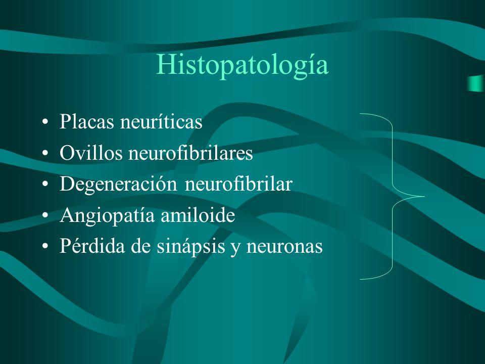 Histopatología Placas neuríticas Ovillos neurofibrilares
