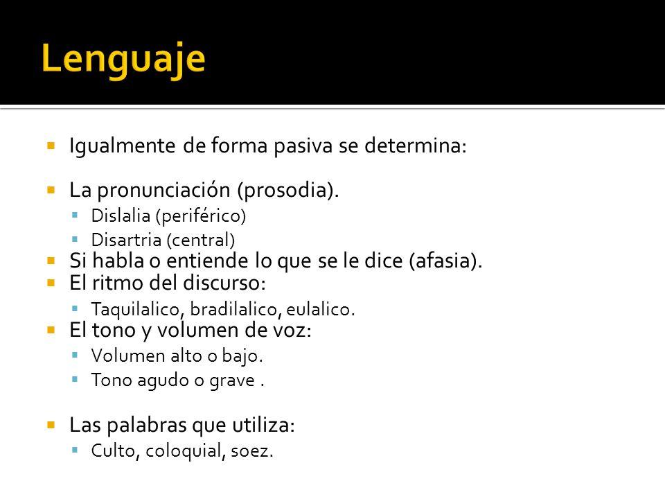 Lenguaje Igualmente de forma pasiva se determina: