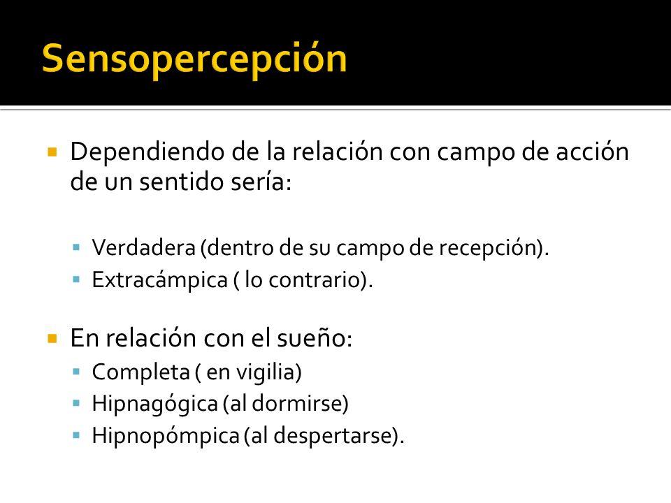 Sensopercepción Dependiendo de la relación con campo de acción de un sentido sería: Verdadera (dentro de su campo de recepción).