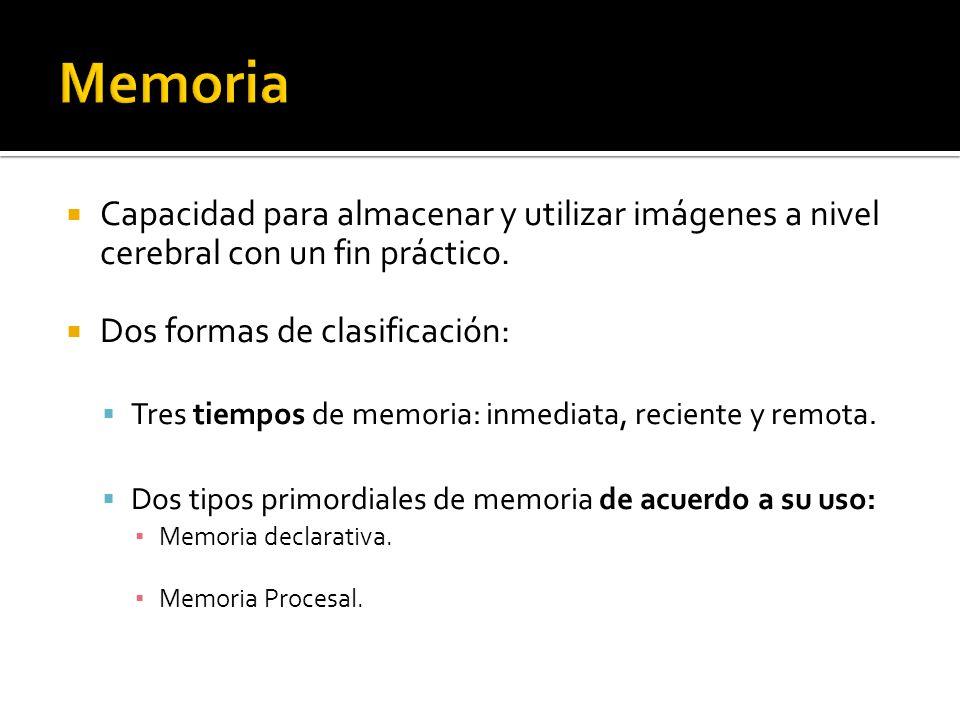 Memoria Capacidad para almacenar y utilizar imágenes a nivel cerebral con un fin práctico. Dos formas de clasificación: